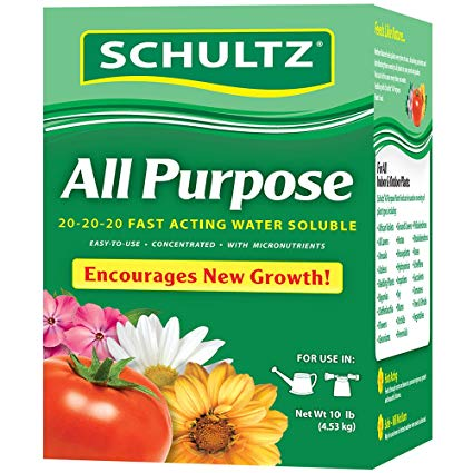 fertilizer for your philodendron